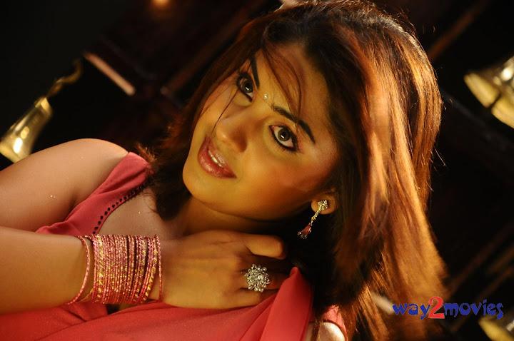 celebrity photos richa gangopadhyay cleavage exposing stills