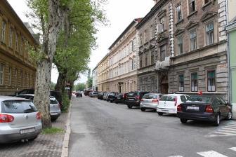 nazorova devastacija platane Karlovac