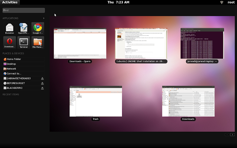 Gnome shell on Ubuntu 10.10 64 bit
