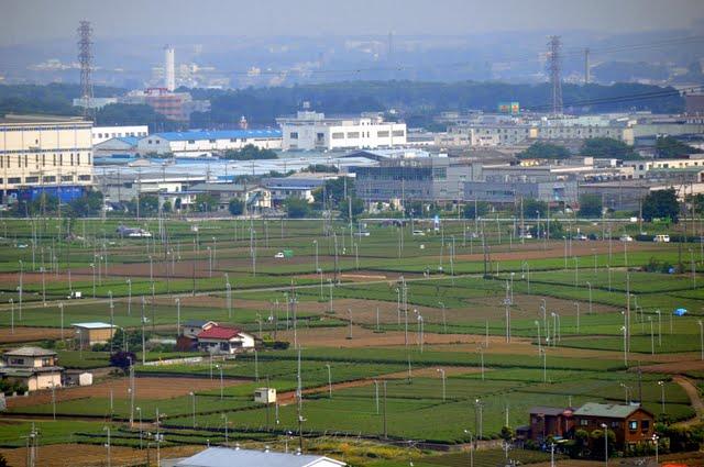 桜山展望台からの風景