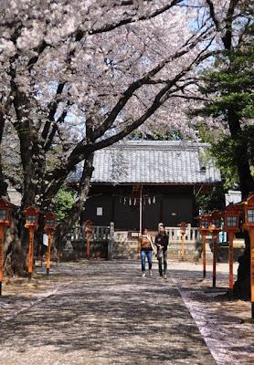 日枝神社の参道