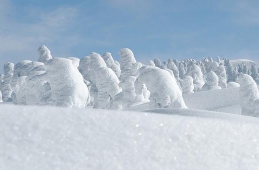 https://lh5.googleusercontent.com/_m4pUbQQViFQ/TVVx0YI2ixI/AAAAAAAARKA/yzJ99wnmoxI/snow_monster_20.jpg