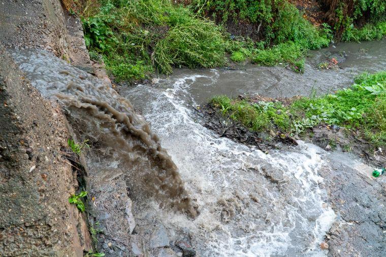 Сточные воды сливаются в Днестр, Сороки, Молдова