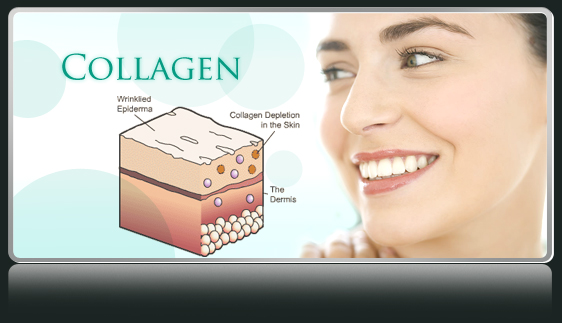 collagen-la-gi-ma-duoc-phai-dep-ua-chuong-nhu-vay
