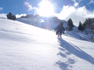 Progressió fatigosa per la inconsistència de la neu