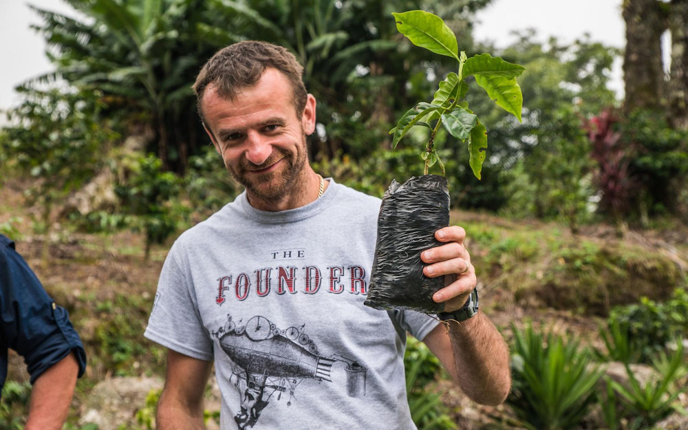sasa sestic with a coffee seedling