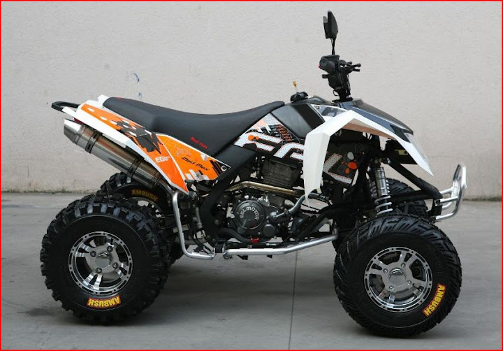 250cc 300cc 350cc 450cc Sports Recreational Quad Bikes & Race Atv