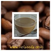 กาแฟสำเร็จรูป 3 in 1 เพื่อสุขภาพ และควบคุมน้ำหนัก