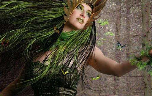 Inserindo as borboletas na imagem