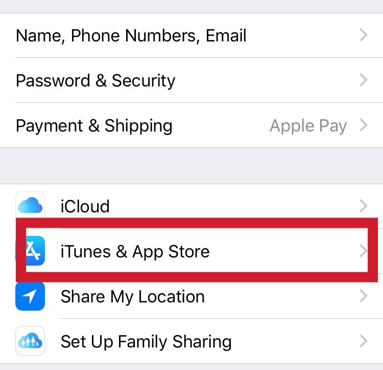 "Select the ""iTunes and App Store"" tab"