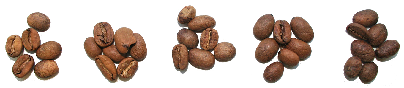 roast grades of coffee beans