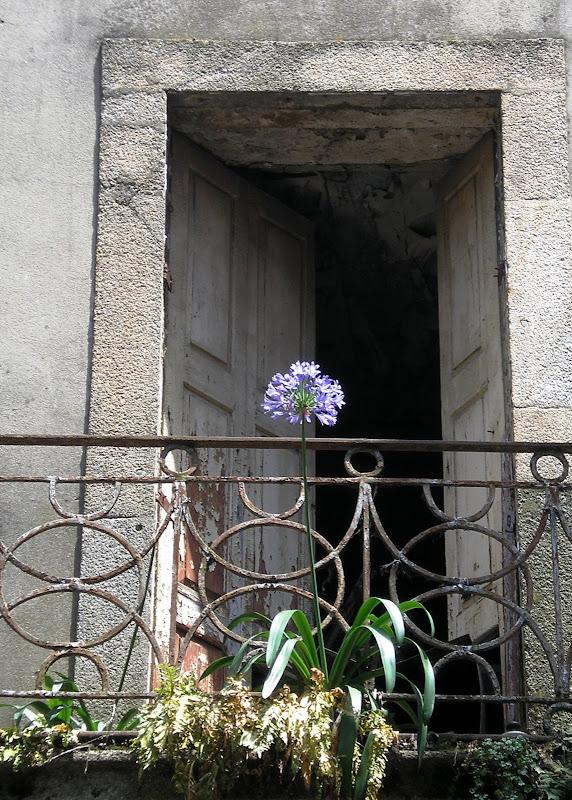 Uma janela perdida no tempo
