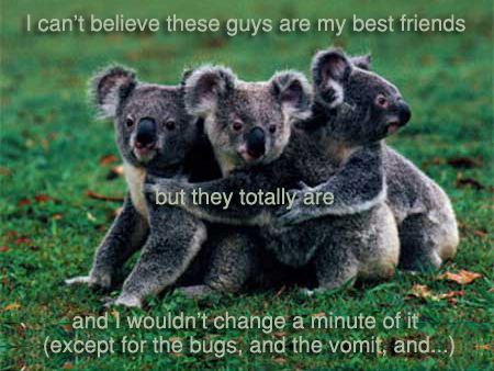 Secret 10 - Image: three koala bears in a group hug. Text: I can't believe these guys are my best friends but they totally are, and I wouldn't change a minute of it (except for the bugs, and the vomit, and ...) Font: sans-serif.