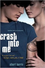 Review: Crash Into Me by Albert Borris