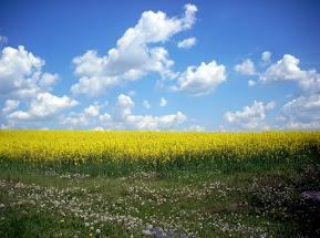 Господь промовляє до України