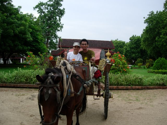 Travelling in an open roof horse cart in Bagan