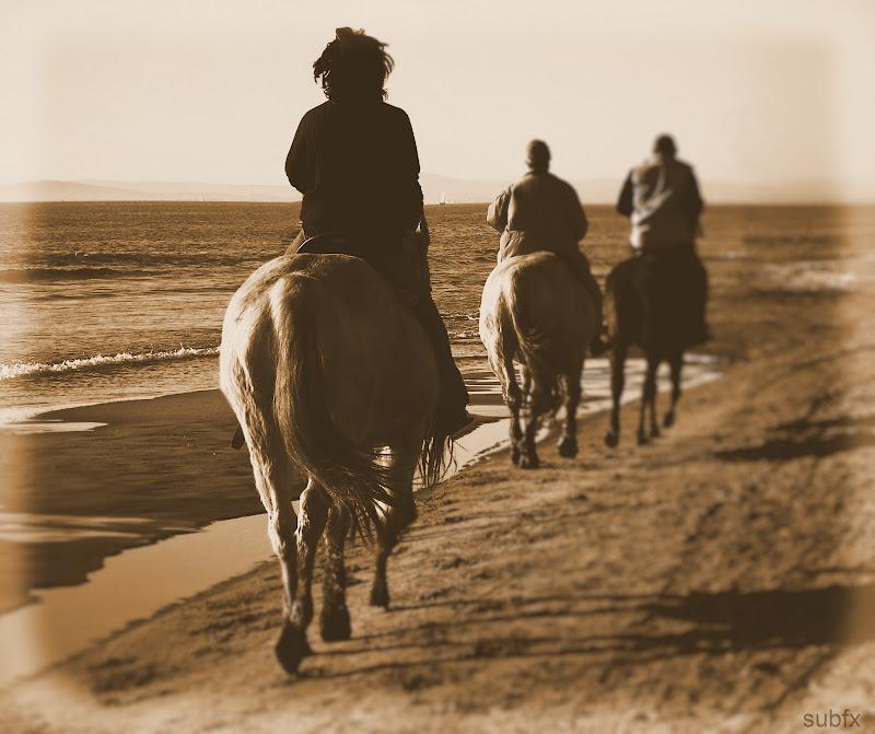 """Défi Post Traitement XVIII : """"Promenade sur la plage"""" Defi18_subfx_2"""