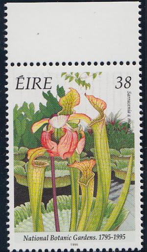 Irland1995.jpg