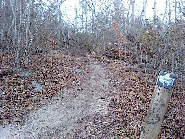 some technical terrain along the Neuse River Trail