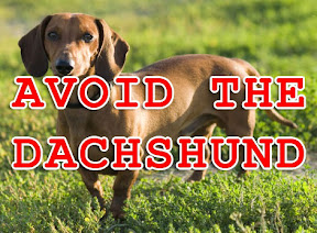 avoid the dachshund