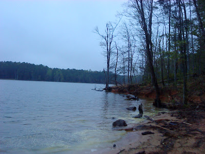 Falls Lake shoreline early in the morning