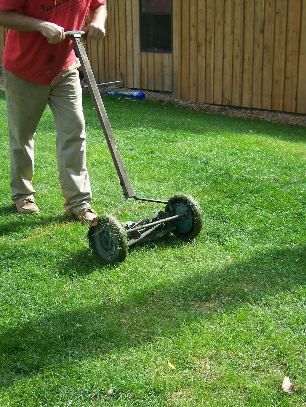 "New Lawn, ""New"" Mower"