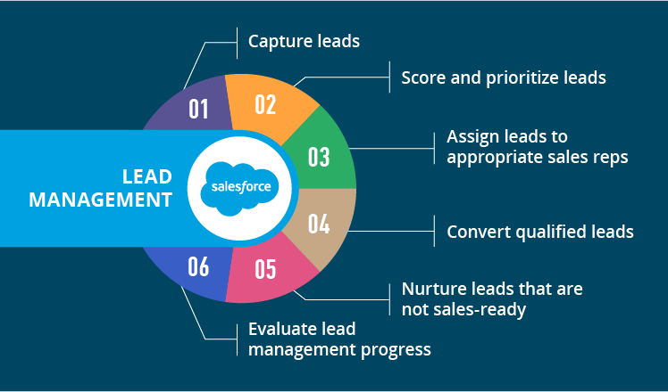lead management overview