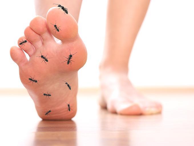 Missempfindungen durch Nervenschädigungen beschreiben Diabetes-Patienten oft als Ameisenlaufen.