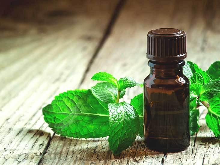 Peppermint Oil for Migraines: Does It Work?