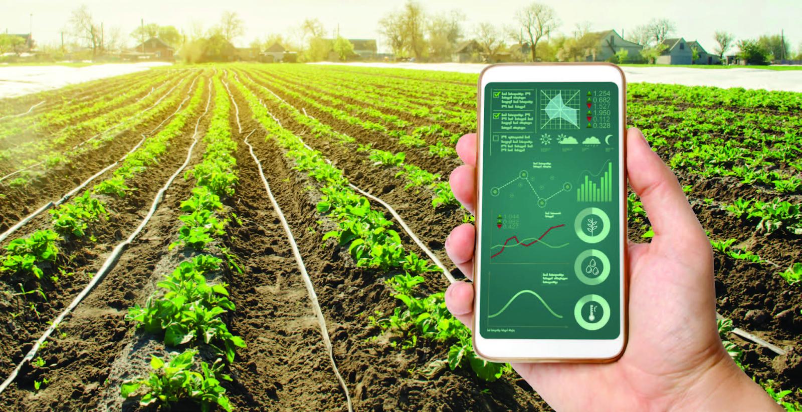 IoT có tác động lớn đến ngành nông nghiệp