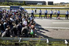 Sept. 9, 2015 Hundreds of refugees walk in Southern Jutland motorway near Padborg in Denmark.