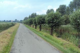 Nuit de Santpoort (NL): 60, 100, 110km: 26-27 juillet 2013 ACxMyszro4rS59zRt2iH2kqk3l9NR7ZAkMFPbKmIH1c=w316-h210-p-no