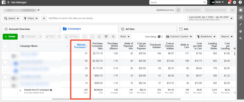 Website Purchase Data