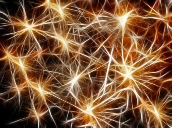 Αστέρων, Χρυσό, Χριστούγεννα, Σύνδεση, Δομή, Δίκτυο