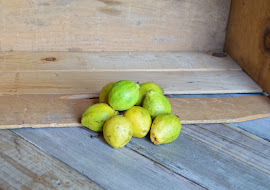 Photo of the share - Guava