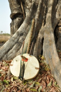 banjo against tree of life