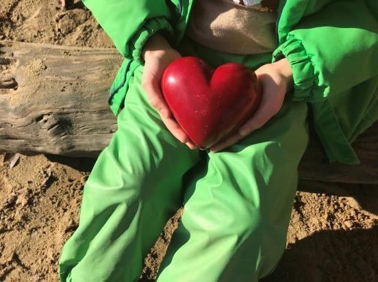 Herz Konzeption