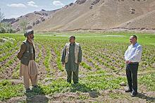 http://upload.wikimedia.org/wikipedia/commons/thumb/e/ee/People_of_Bamyan-6.jpg/220px-People_of_Bamyan-6.jpg