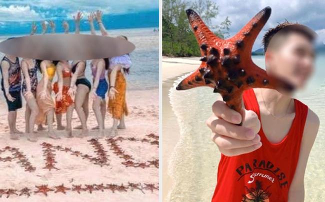 Từ vụ sao biển chết khô ở Phú Quốc: Dân mạng tiếp tục đào thêm hàng