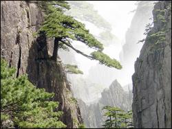 Pegunungan Huangshan (China)