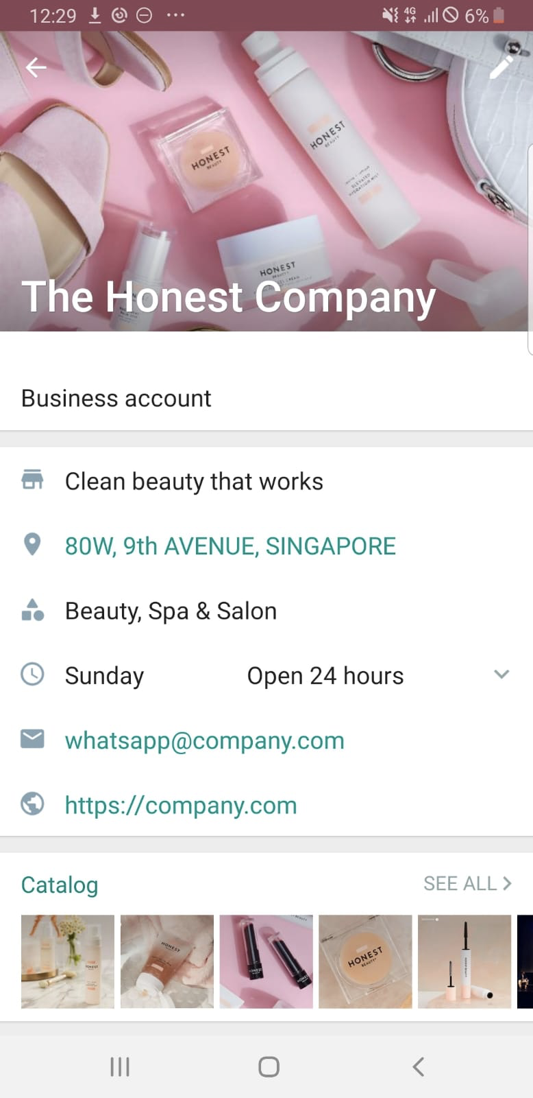 Whatsapp business app business details, opening hours