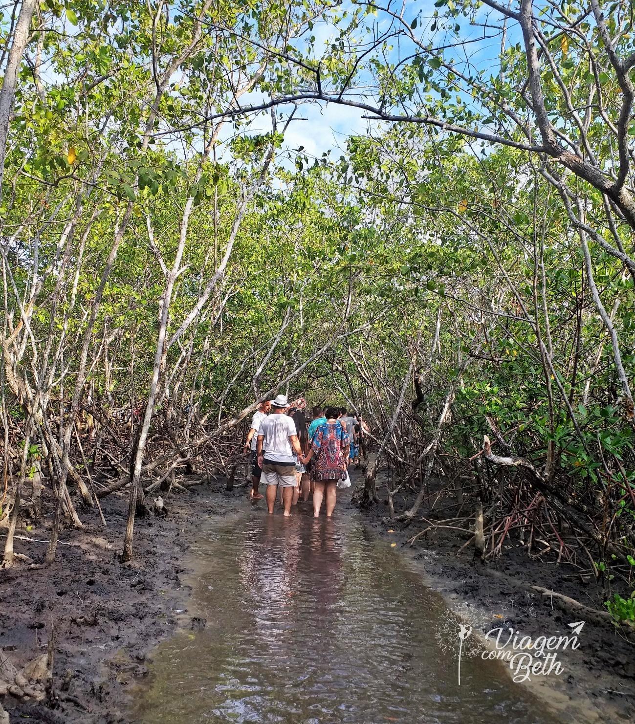 Banho de lama na ilha do sol SANTA CRUZ DE CABRÁLIA