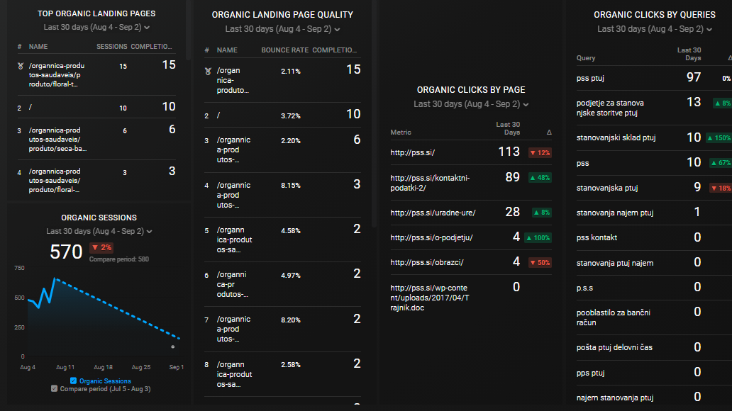 SEO Campaign Performance Report Example