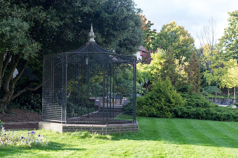 raven cage
