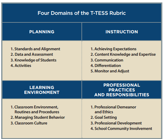 Image result for four domains of the t-tess rubric