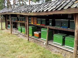 Bijenkasten op de heide