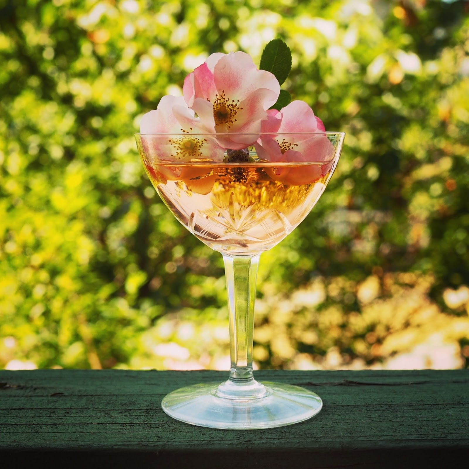 a wine mixer by Floral Elixir Co.
