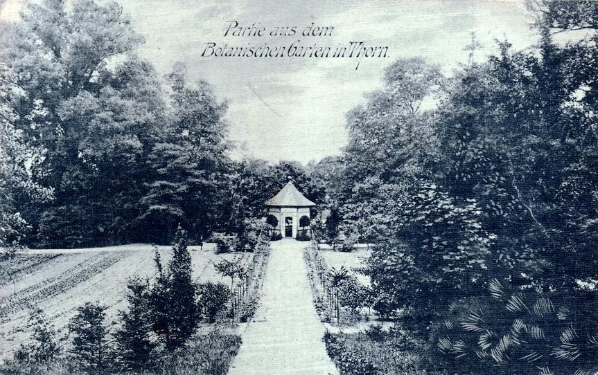 Fragment toruńskiego ogrodu botanicznego