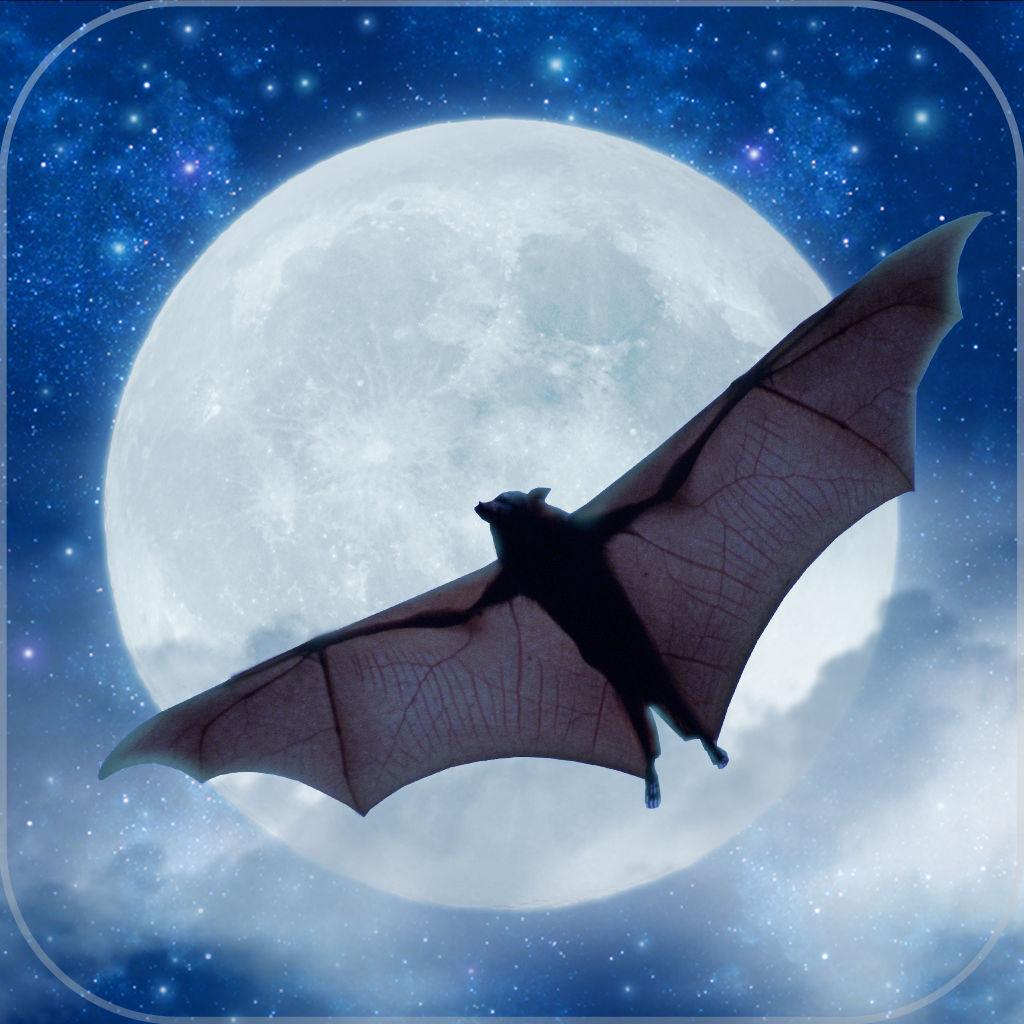BatsFurryFliersoftheNight.jpg