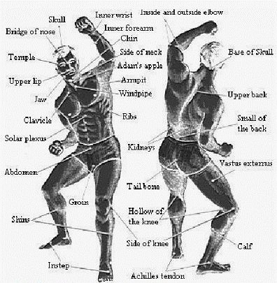 Image result for pressure point fighting style